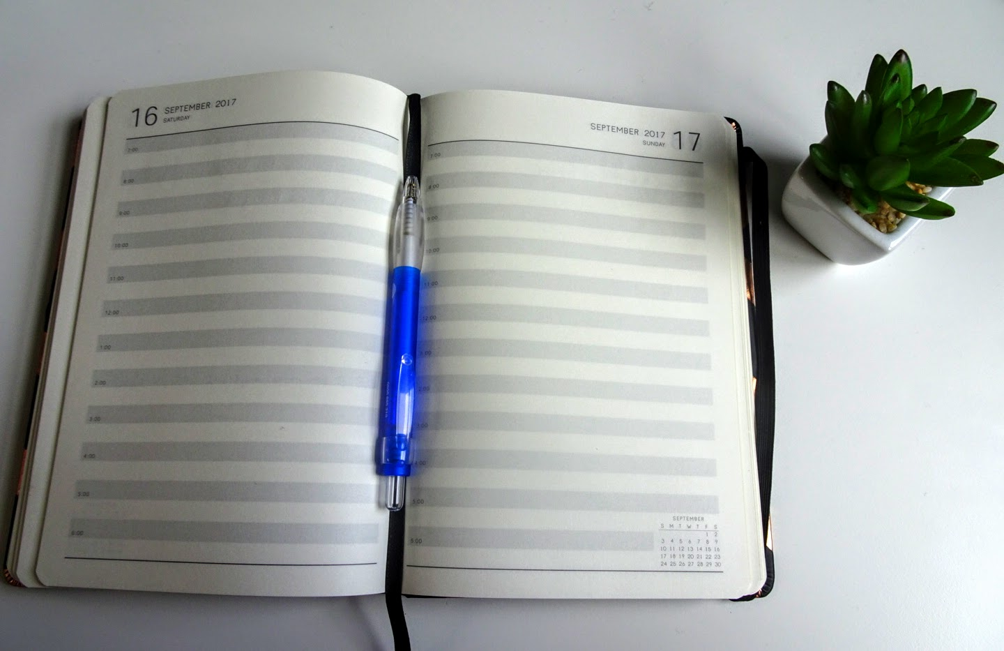 Diary open on a page